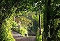 Approaching Wren Cottage - geograph.org.uk - 826415.jpg