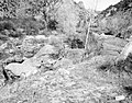 Area of proposed diversion dam on the east side, Virgin River. ; ZION Museum and Archives Image ZION 8008 ; ZION 8008 (11058cee1dcc400e9aedb8231ab01de1).jpg