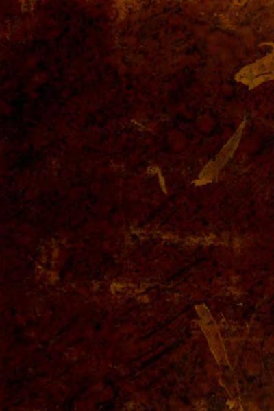 File:Atti dell'Accademia Delle Scienze di Siena detta De' Fisio-Critici - Tomo IX.djvu