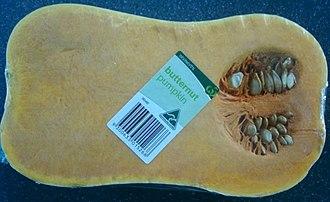 Butternut squash - Butternut pumpkin (Australian term)