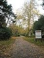 Autumn at Staunton Country Park (1) - geograph.org.uk - 1591803.jpg
