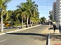 Av Cap. João Crisostomo - panoramio.jpg