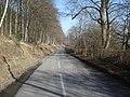 B4362 at the foot of Nash Wood - 2 - geograph.org.uk - 901953.jpg