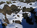 BLM Winter Bucket List -18- Craters of the Moon National Monument, Idaho, to Walk (in Snowshoes) on the Moon (16250031306).jpg