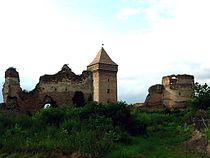 Bač fortress, view from the south-east.jpg