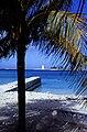 Bahamas 1988 (161) New Providence Nassau (23350298319).jpg