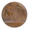 Baksida av medalj med bild av träd - Skoklosters slott - 99249.tif
