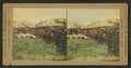 Bales of gift quilts in a Indian camp, by Rinehart, F. A. (Frank A.).png