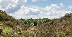 Balloërveld, natuurgebied in Drenthe 07.jpg