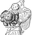 Barett, fig 2, Nordisk familjebok.png