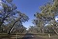 Bargo NSW 2574, Australia - panoramio.jpg
