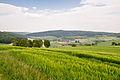 Barntrup - 2015-05-22 - LSG-3919-0031 (1).jpg