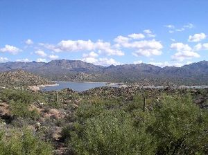 English: Scenic view of Bartlett Lake, Arizona