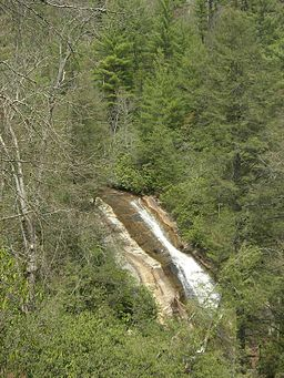 Bearwallow Falls at Gorges State Park.jpg