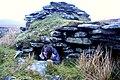 Beehive dwelling at Gearraidh Bheinn na Gile - geograph.org.uk - 1271438.jpg