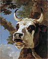 Bellowing ox, by Jan Asselijn.jpg