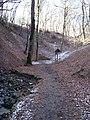 Bertino údolí (06), u zastavení 6.jpg