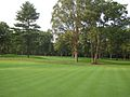 Bfi-golf-tour41.jpg
