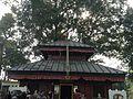 Bhutan Devi Temple.JPG