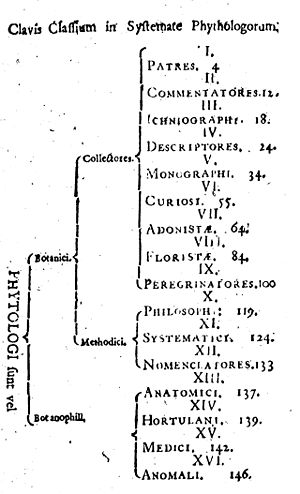 Bibliotheca Botanica - Linnaeus's method for classifying the elements of Bibliotheca Botanica.