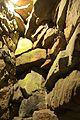 Biddulph Grange 2015 080.jpg