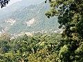Bijayapur Dharan 56700 03.jpg