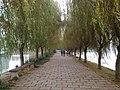 Binhu, Wuxi, Jiangsu, China - panoramio (275).jpg