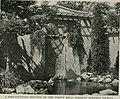 Bird-lore (1916) (14752270161).jpg