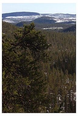 Bjørnelandets nationalpark.jpg