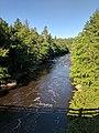 Blackwater Falls State Park WV 27.jpg