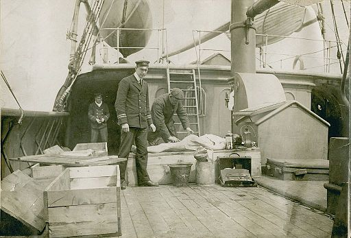 Body of RMS Titanic victim aboard rescue vessel CS Minia, April or May 1912