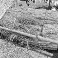 Boom liggende in gesloten boomhaken - Blaricum - 20344649 - RCE.jpg