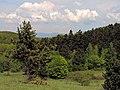 Borina - panoramio.jpg