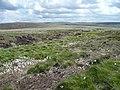 Boundary trench, Wham Head, Marsden - geograph.org.uk - 851129.jpg