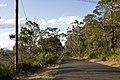 Bowral NSW 2576, Australia - panoramio (134).jpg
