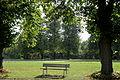 Brühl - Schloss Augustusburg - Schlosspark - Promenade (innen) 07 ies.jpg