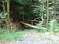Bridge to the forest - geograph.org.uk - 520605.jpg