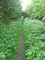 Bridleway near Parkgate - geograph.org.uk - 799514.jpg