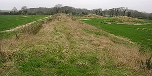 Bank barrow - A view along the 180 metre-long Broadmayne bank barrow in Dorset, U.K.