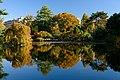 Brooklyn Botanic Garden New York November 2016 007.jpg