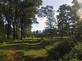 Buckhorn State Park - Along the Savannah Trail.jpg