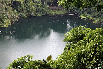Bukit Timah Nature Reserve - Quarry visible from the Bukit Timah Nature Reserve