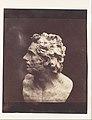Bust of Patroclus MET DP109576.jpg