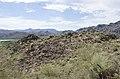 Butcher Jones Trail to Pinter's Point Loop, Tonto National Park, Saguaro Lake, Ft. McDowell, AZ - panoramio (118).jpg