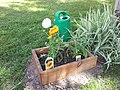 Butterfly Garden from reclaimed drawer (14327536480).jpg