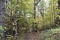 Buttermilk Falls - panoramio (3).jpg