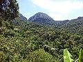 Cachoeiras de Macacu - State of Rio de Janeiro, Brazil - panoramio (21).jpg