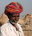 Camel Trader (2053075601).jpg