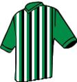 Camisa tricolor primavera.png