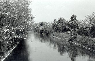 Canale Villoresi - The canal in spring between Busto Garolfo and Villastanza (Parabiago)